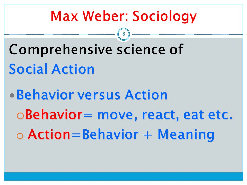 Definition of sociological theory