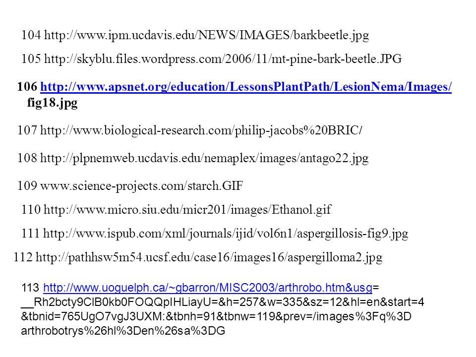 http www.forces.ca en job pdf medicalofficer-50