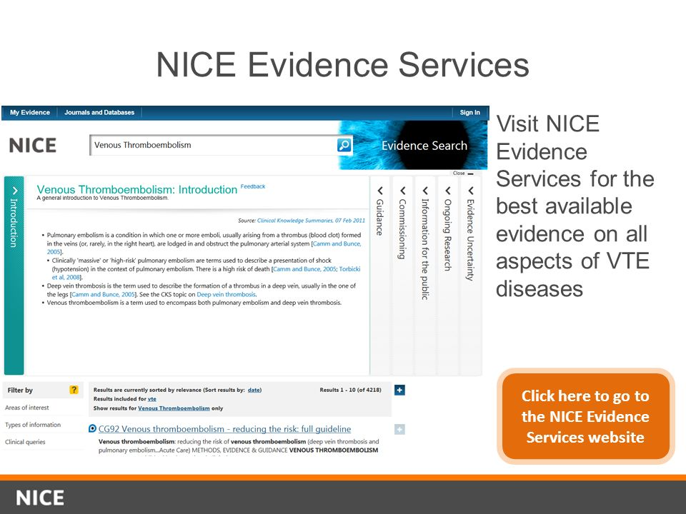 NICE Evidence Services
