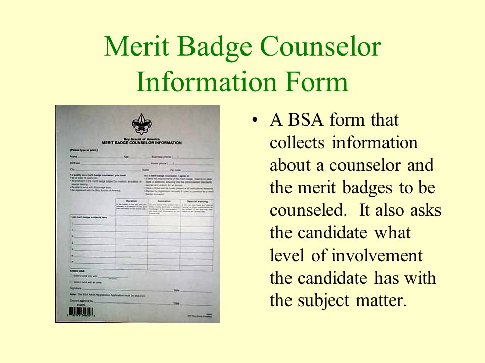 Merit Badge Orientation - ppt video online download