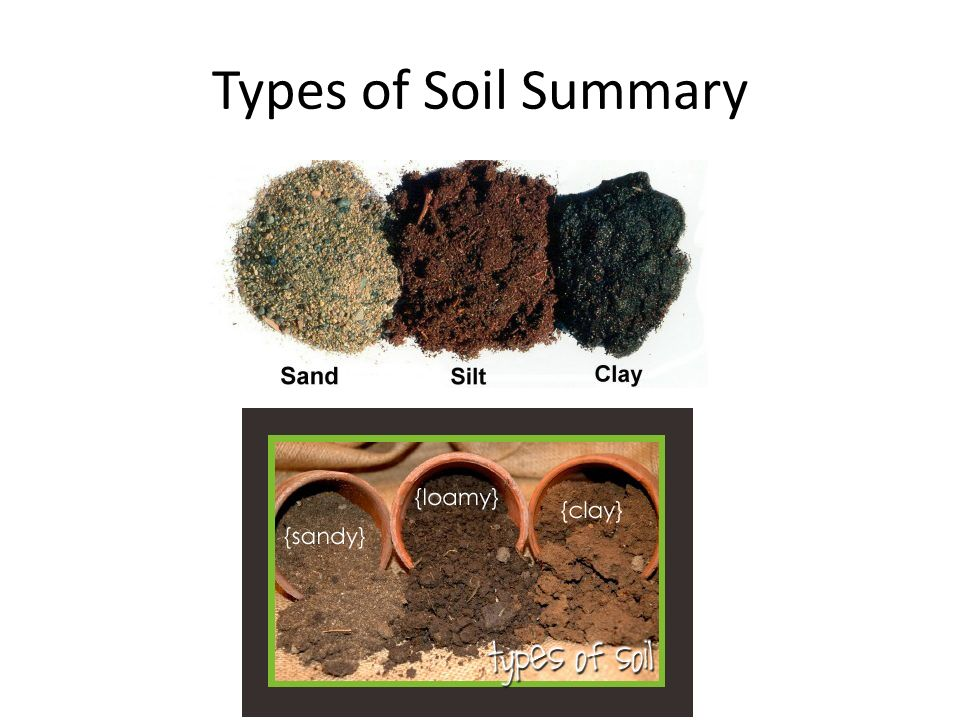 Properties of soil grade ppt download for What are the four types of soil