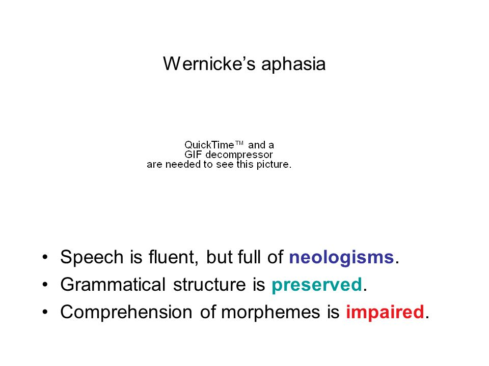 Wernicke's aphasia Speech is fluent, but full of neologisms.
