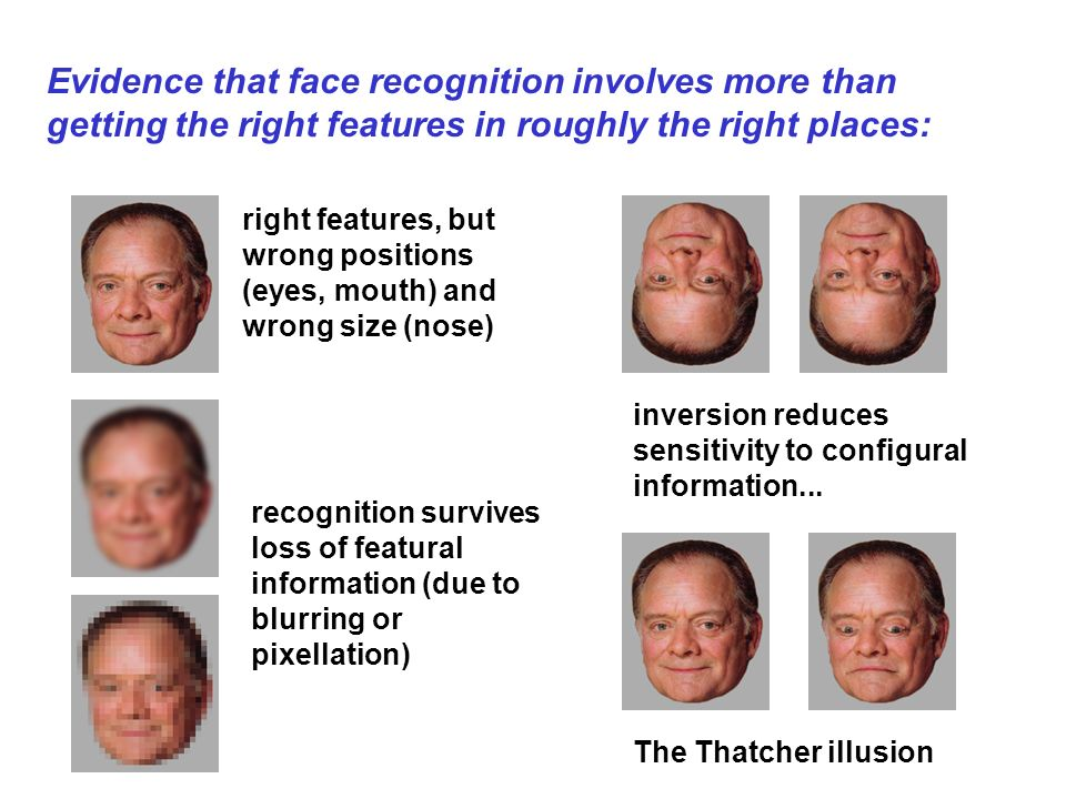 Evidence that face recognition involves more than getting the right features in roughly the right places: