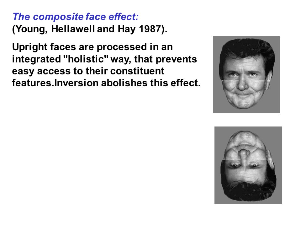 The composite face effect: