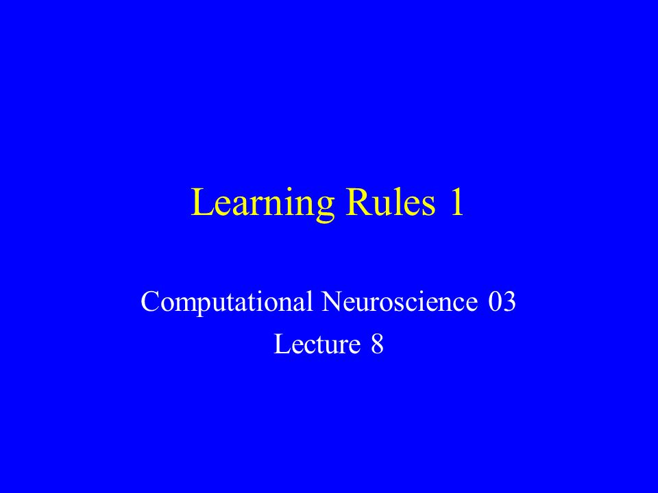 Computational Neuroscience 03 Lecture 8