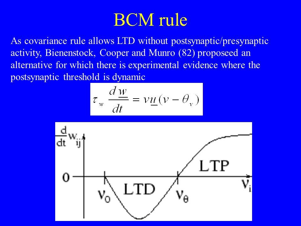 BCM rule