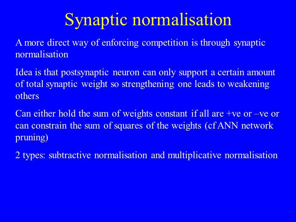 Synaptic normalisation