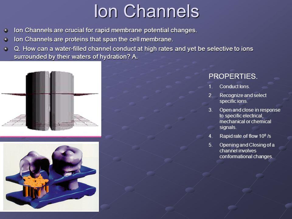 Ion Channels PROPERTIES.