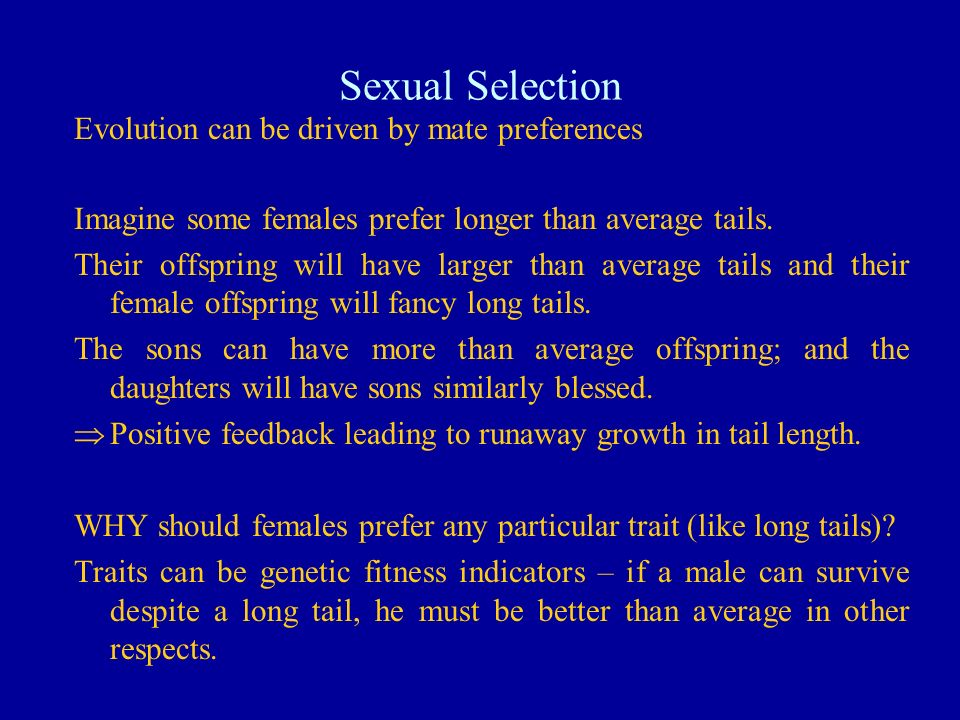 Sexual Selection Evolution can be driven by mate preferences