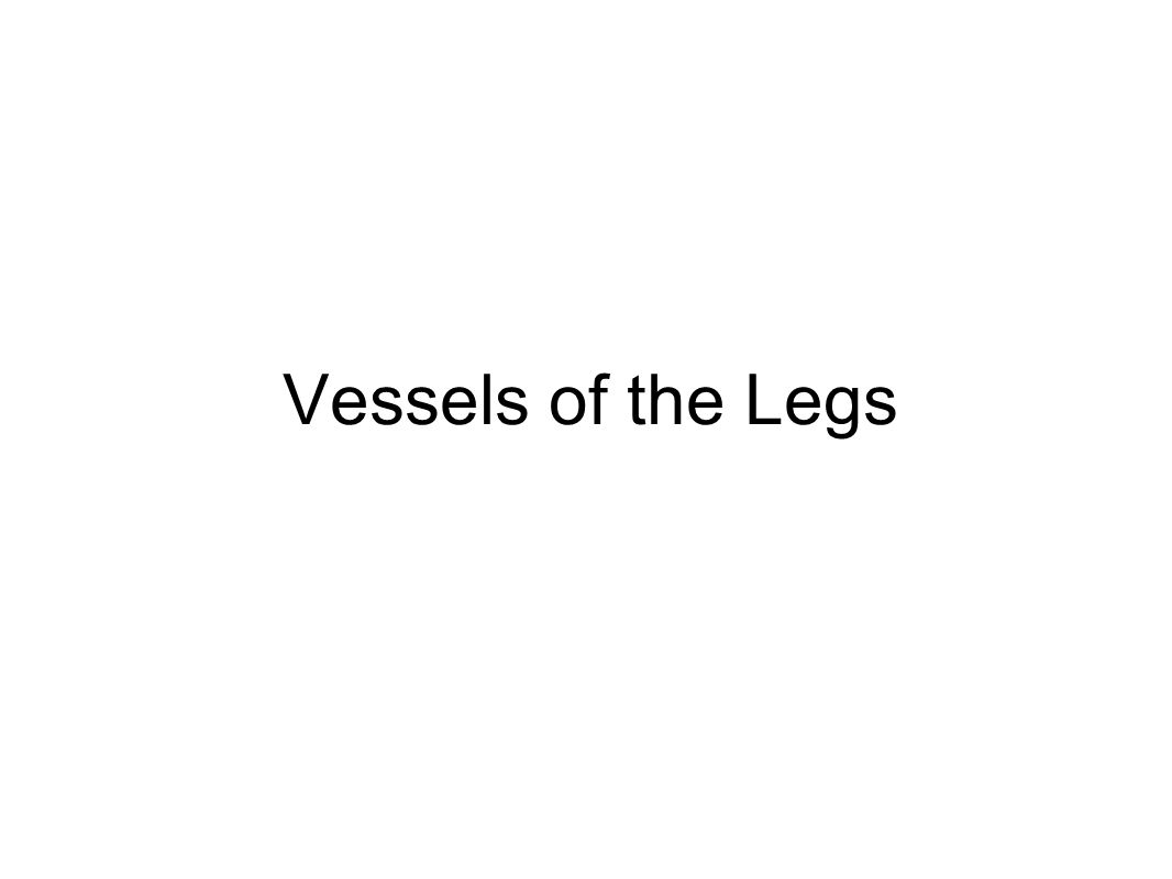 Vessels of the Legs