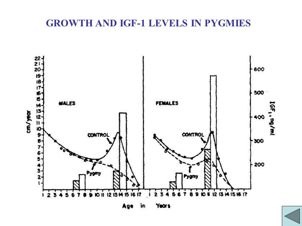 GROWTH AND IGF-1 LEVELS IN PYGMIES