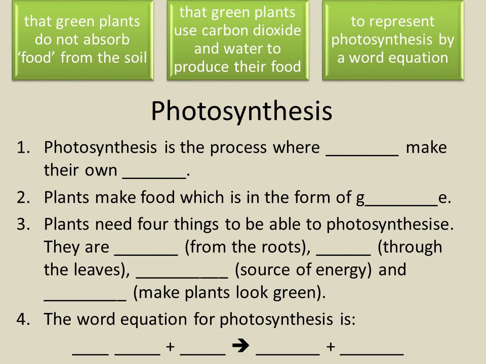 photosythesis word equation