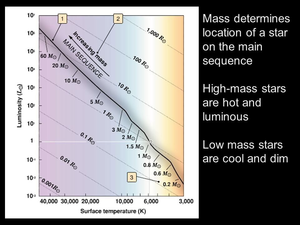 Mass determines location of a star on the main sequence