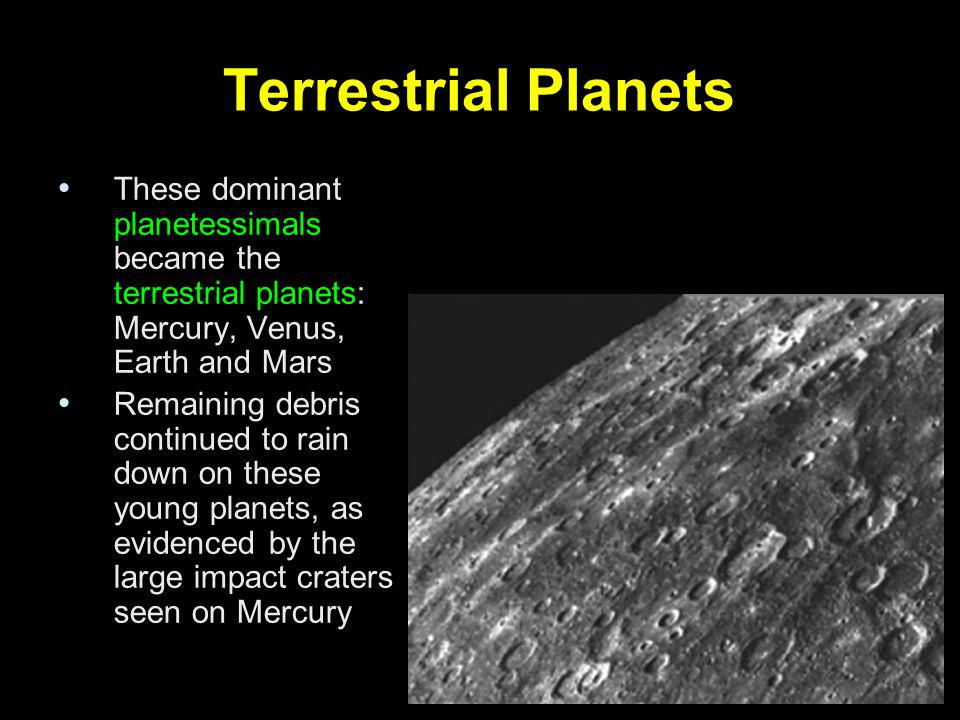 Terrestrial Planets These dominant planetessimals became the terrestrial planets: Mercury, Venus, Earth and Mars.