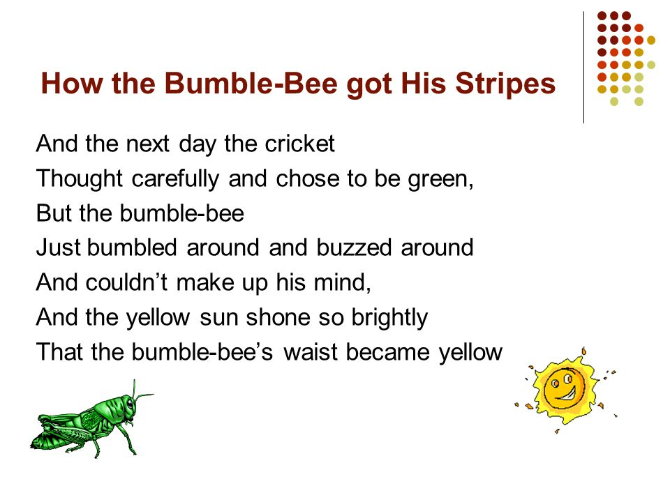 How the Bumble-Bee got His Stripes