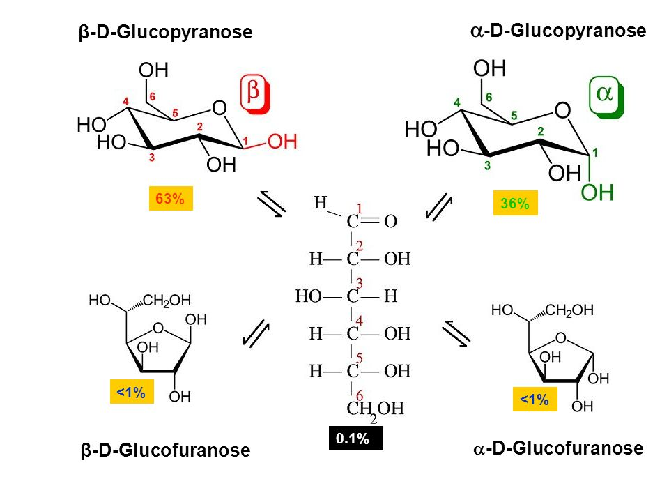 L Glucofuranose THE STRUCTURE OF CARBO...