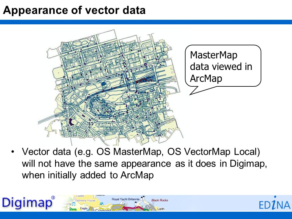 Appearance of vector data