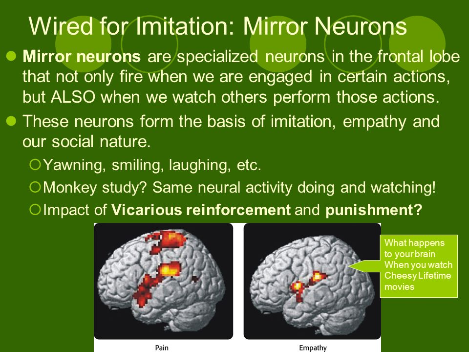 Ap psychology unit 6 learning ppt download for Mirror neurons psychology definition