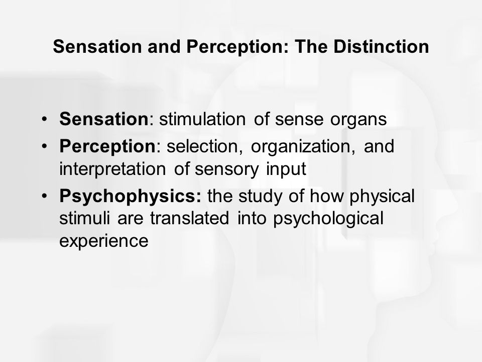 what is the central distinction between the sensation and perception The main difference between sensation and perception is that sensations are the passive process of bringing information from the outside world into the body and to the brain perception, on the other hand, is the active process of selecting, organizing, and interpreting the information brought to the brain by the senses.