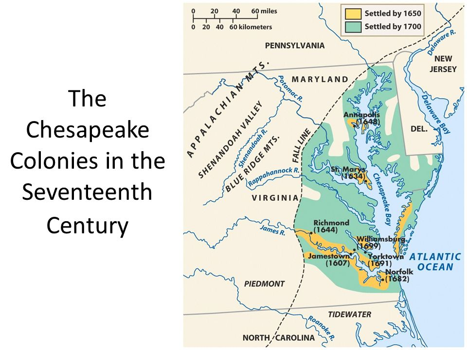 chesapeake bay vs massachusetts bay colonies Chesapeake bay vs massachusetts bay colonies essay | the new england community was so strong and so supportive in comparison to that of the chesapeake bay.