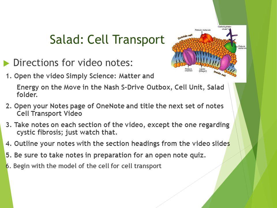 Cellular transport worksheet section a