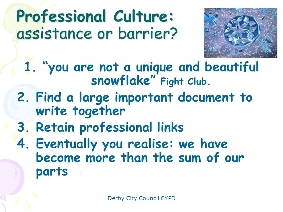 Professional Culture: assistance or barrier