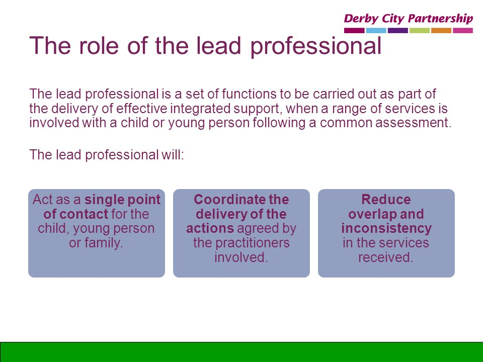 The role of the lead professional