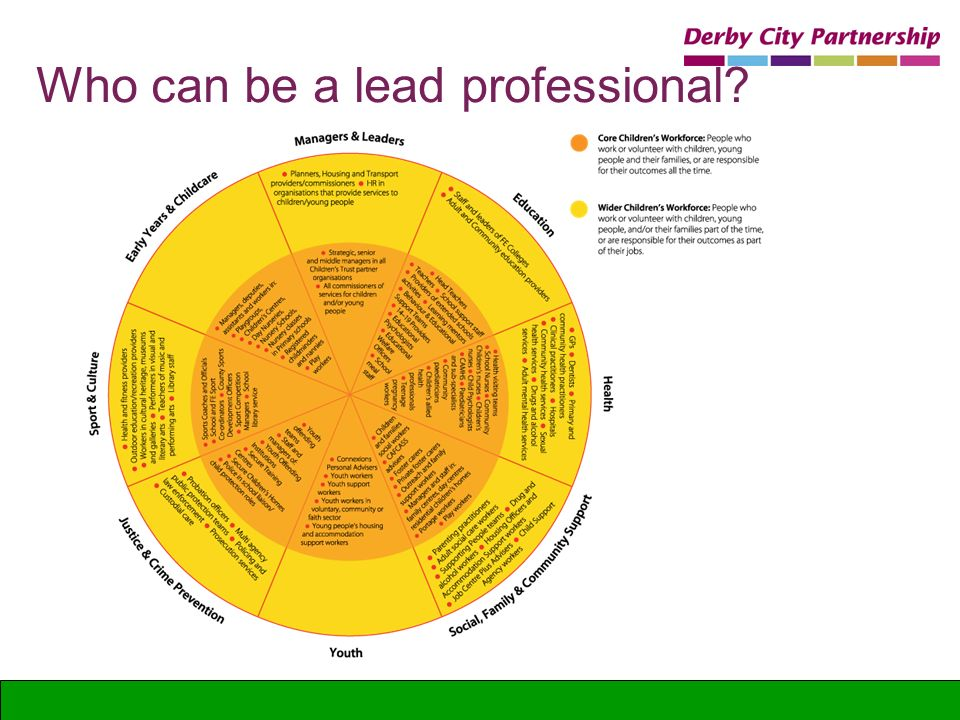 Who can be a lead professional