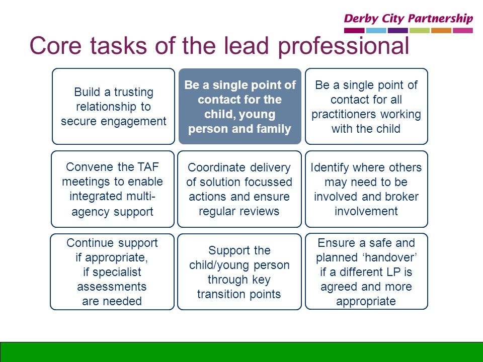 Core tasks of the lead professional
