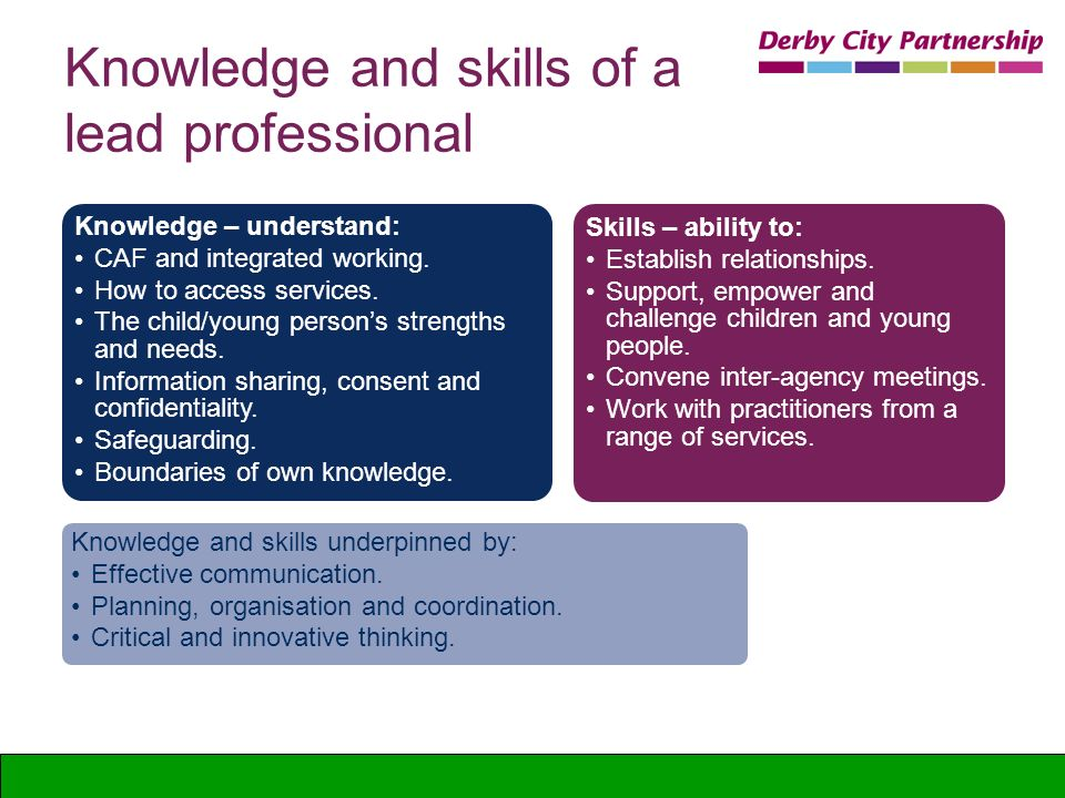 Professional Knowledge And Abilities Affect Career Infobarrel