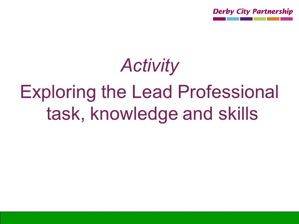 Exploring the Lead Professional task, knowledge and skills