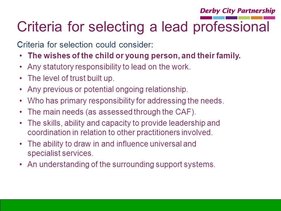 Criteria for selecting a lead professional