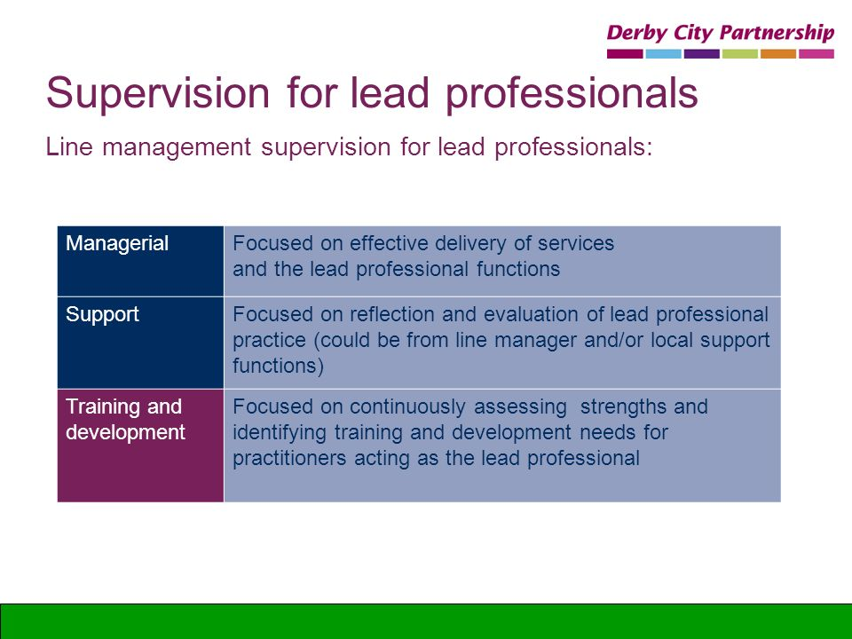 Supervision for lead professionals