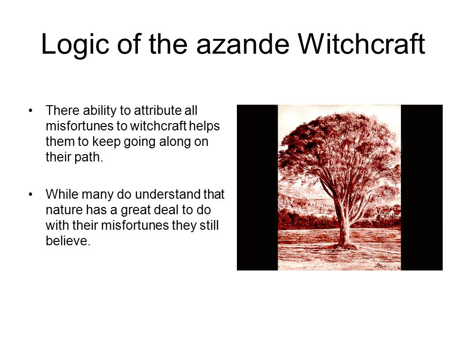a review of witchcraft practices and belief of the azande people Study 190 anthropology 12 final flashcards from emily r on to people who practice magic it appears never to fail witchcraft beliefs among the azande:.