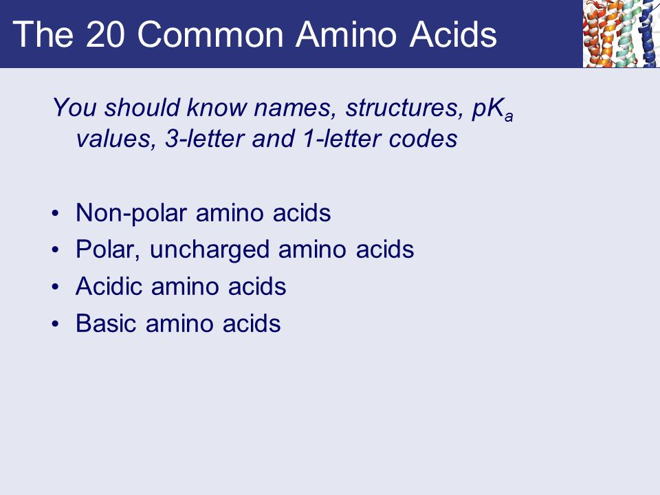 Chapter 4 amino acids ppt video online download the 20 common amino acids you should know names structures pka values 3 thecheapjerseys Gallery