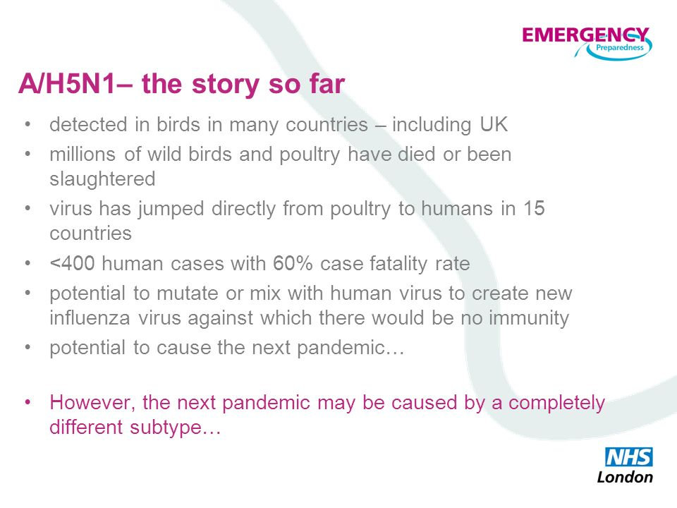 A/H5N1– the story so far detected in birds in many countries – including UK. millions of wild birds and poultry have died or been slaughtered.