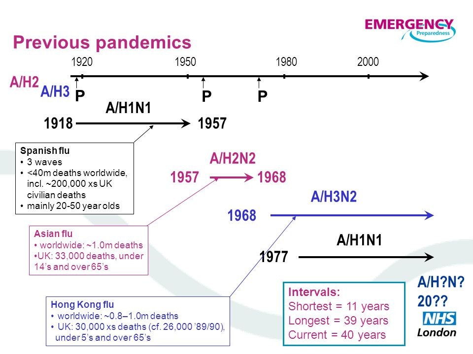 Previous pandemics A/H2 A/H3 P P P 1918 1957 A/H1N1 1968 1957 A/H2N2