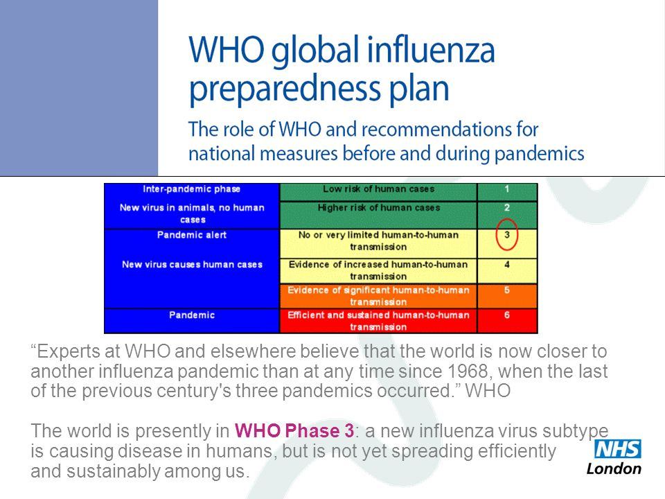 Experts at WHO and elsewhere believe that the world is now closer to another influenza pandemic than at any time since 1968, when the last of the previous century s three pandemics occurred. WHO