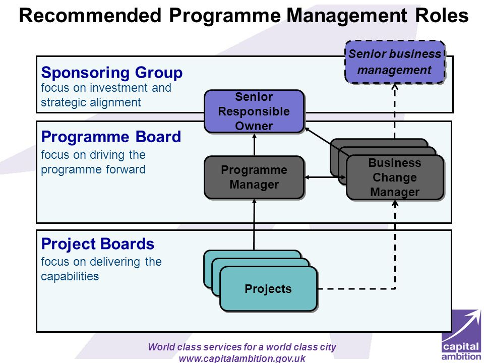 Recommended Programme Management Roles