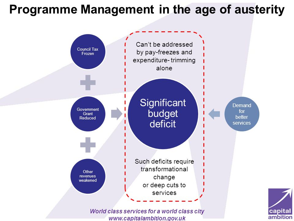 Programme Management in the age of austerity