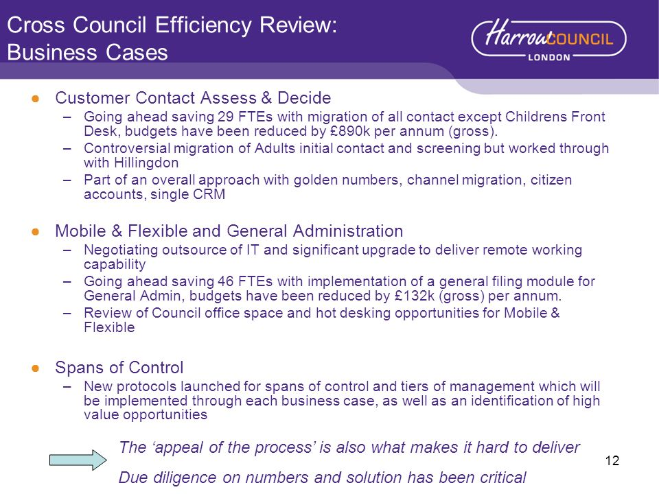 Cross Council Efficiency Review: Business Cases