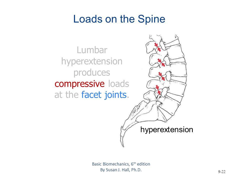 the biomechanics of the human spine