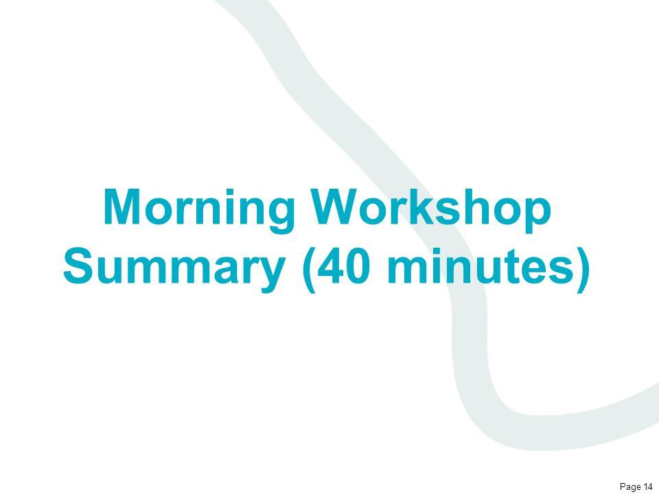 Morning Workshop Summary (40 minutes)