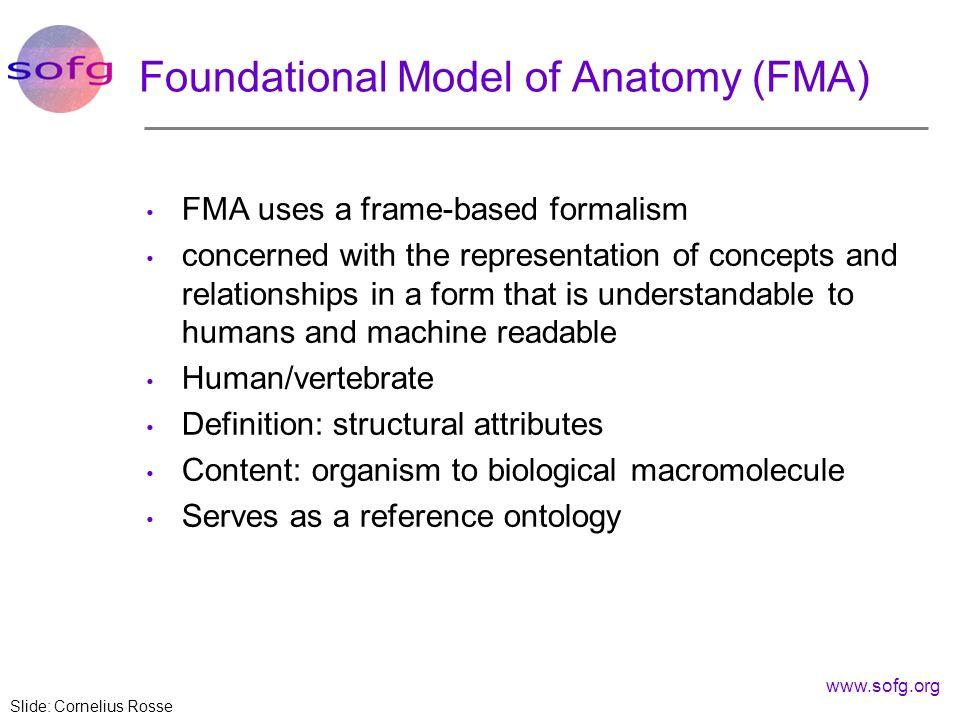 Foundational Model of Anatomy (FMA)