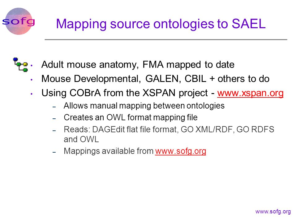 Mapping source ontologies to SAEL