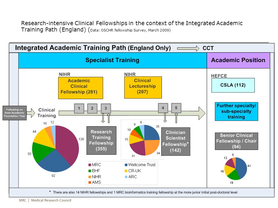 Research-intensive Clinical Fellowships in the context of the Integrated Academic Training Path (England) (Data: OSCHR fellowship Survey, March 2009)