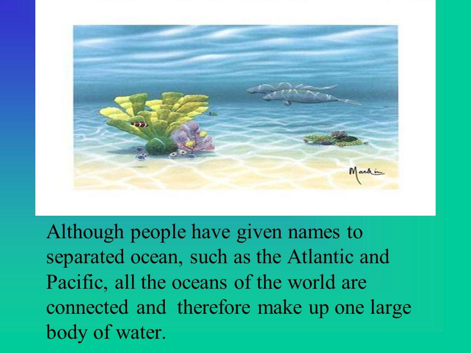 The World Ocean Ppt Video Online Download - 4 oceans names