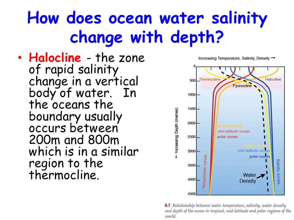 relationship between salinity and density of seawater