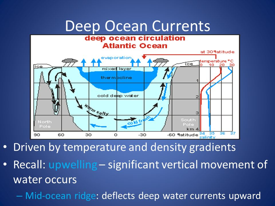 Physical and Chemical Oceanography - ppt download