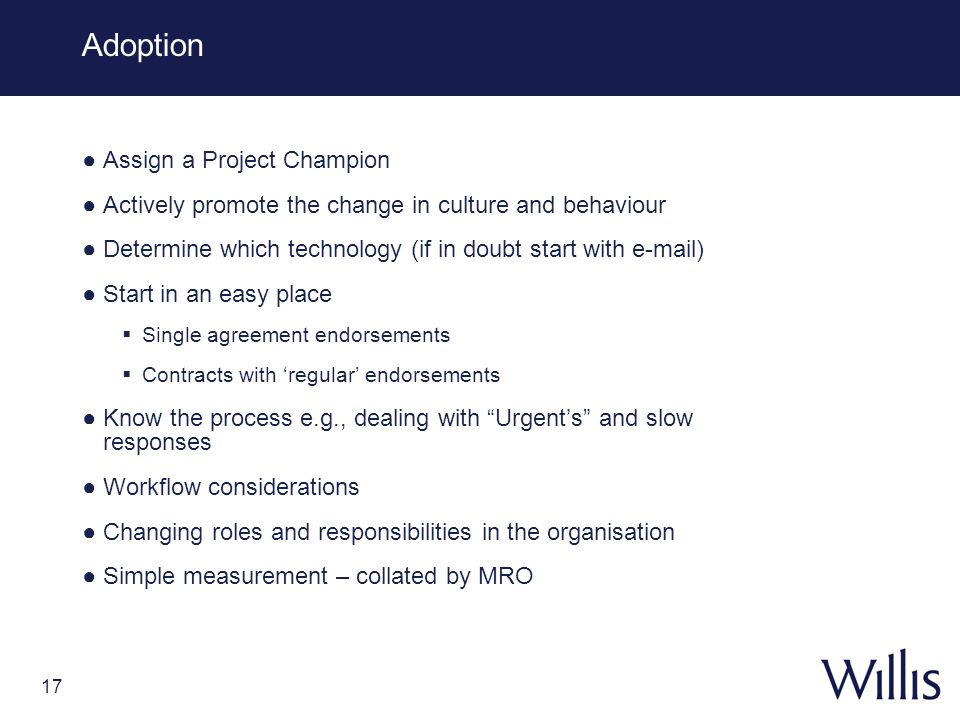 Adoption Assign a Project Champion
